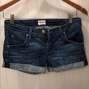 Hudson shorts in Hampton size 26